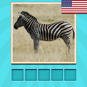 Animals Quiz - guess and learn